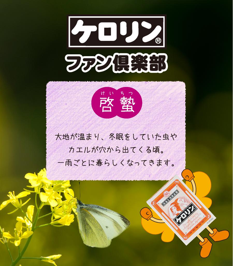 啓蟄(3月5日〜3月19日):大地が暖まり、冬眠していた虫やカエルが穴から出てくる頃。一雨ごとに春らしくなってきます。