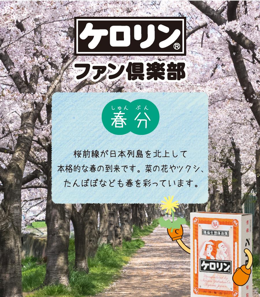 春分(3月20日〜4月3日):桜前線が日本列島を北上して本格的な春の到来です。菜の花やツクシ、たんぽぽなども春を彩っています。