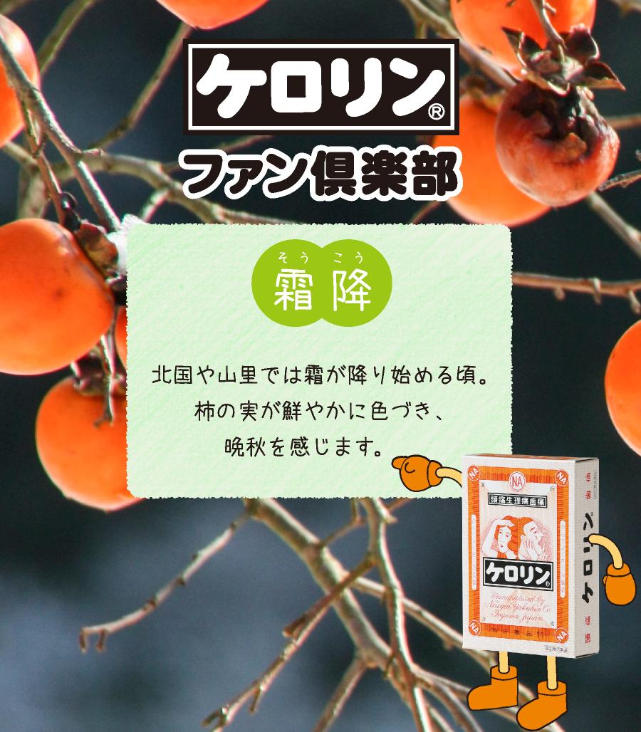 霜降(10月23日〜11月7日):北国や山里では霜が降り始める頃。柿の実が鮮やかに色づき、晩秋を感じさせます。